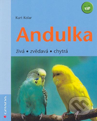 Peticenemocnicesusice.cz Andulka Image