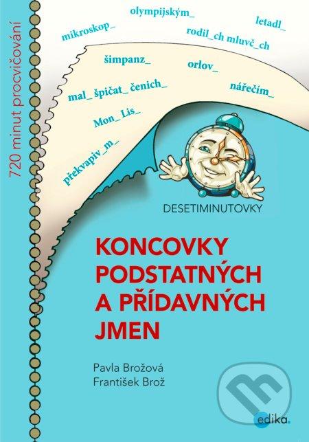 Peticenemocnicesusice.cz Koncovky podstatných a přídavných jmen Image