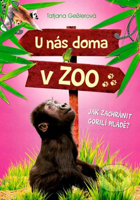 Interdrought2020.com U nás doma v ZOO: Jak zachránit gorilí mládě? Image