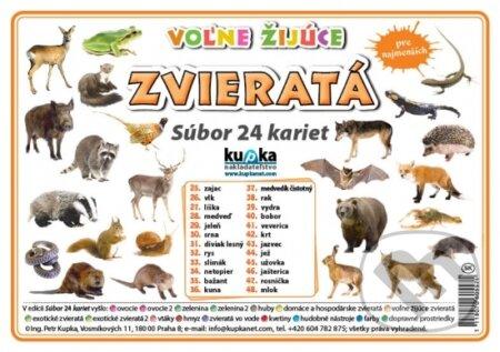 Peticenemocnicesusice.cz Súbor 24 kariet - Zvieratá (voľne žijúce) Image