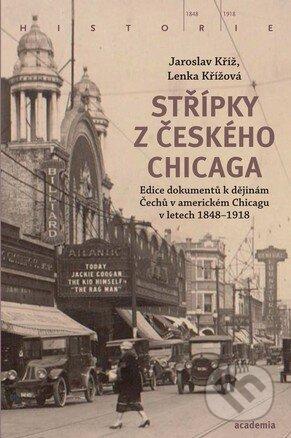 Peticenemocnicesusice.cz Střípky z českého Chicaga Image