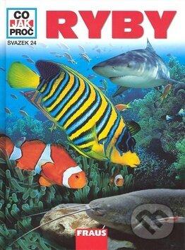 Excelsiorportofino.it Ryby - Co, Jak, Proč? Image