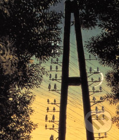 Paul Delvaux (VHS - Video) DVD