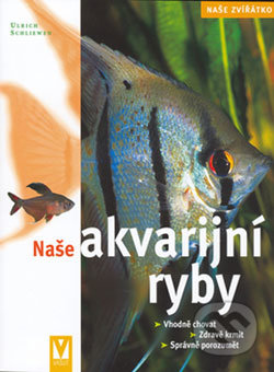 Fatimma.cz Naše akvarijní ryby Image