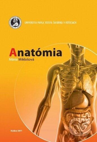 Newdawn.it Anatómia Image