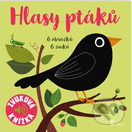 Peticenemocnicesusice.cz Hlasy ptáků Image