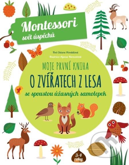 Moje první kniha o zvířatech z lesa - Chiara Piroddi