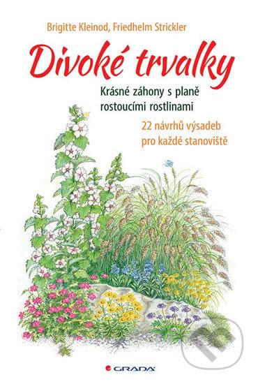 Fatimma.cz Divoké trvalky Image