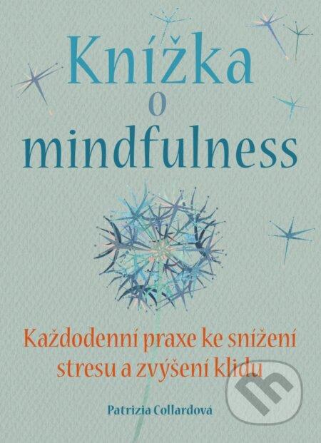 Peticenemocnicesusice.cz Knížka o mindfulness Image