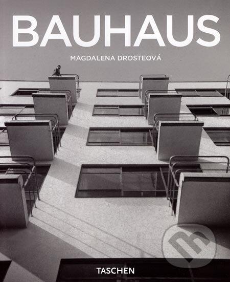 Peticenemocnicesusice.cz Bauhaus Image
