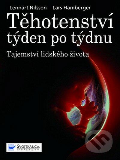 Fatimma.cz Těhotenství týden po týdnu Image