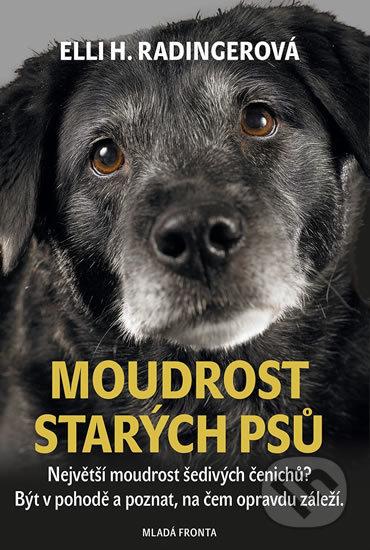 Interdrought2020.com Moudrost starých psů Image