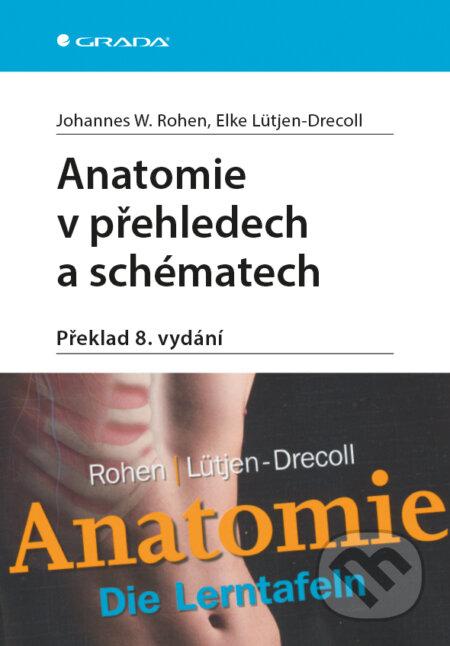 Anatomie v přehledech a schématech - Rohen Johannes W., Elke Lütjen-Drecoll