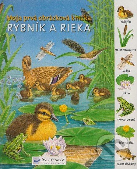 Bthestar.it Rybník a rieka Image