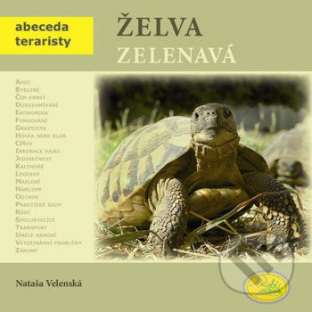 Fatimma.cz Želva zelenavá Image
