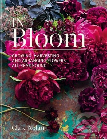 In Bloom - Clare Nolan