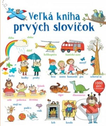 Interdrought2020.com Veľká kniha prvých slovíčok Image
