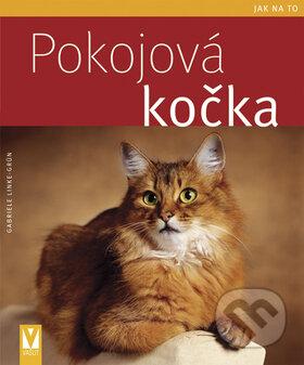 Venirsincontro.it Pokojová kočka Image