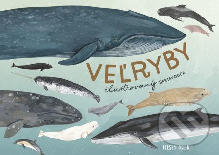 Veľryby: ilustrovaný sprievodca - Kelsey Oseid