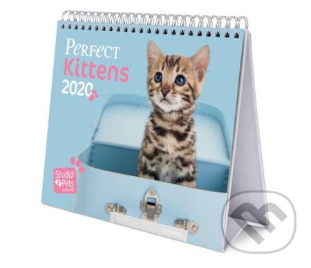 Stolní kalendář 2020: Kočky