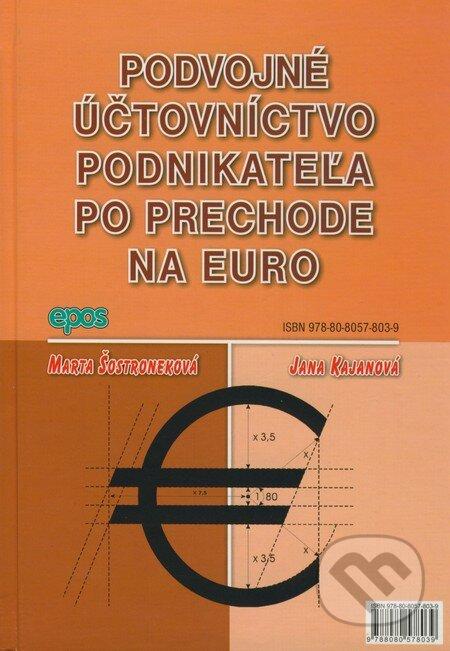 Venirsincontro.it Podvojné účtovníctvo podnikateľa po prechode na euro Image