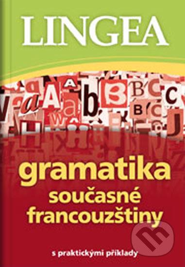 Excelsiorportofino.it Gramatika současné francouzštiny s praktickými příklady Image
