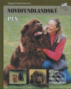 Interdrought2020.com Novofundlandský pes Image