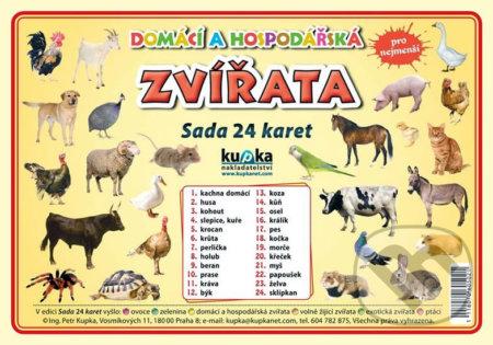 Domácí a hospodářská zvířata - Sada 24 karet - Petr Kupka