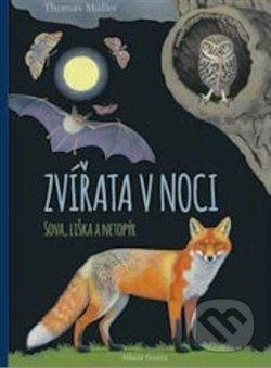 Zvířata v noci: Sova, Liška a Netopýr - Thomas Müller