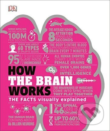 How the Brain Works -