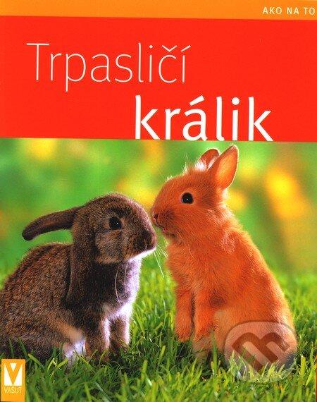 Fatimma.cz Trpasličí králik Image