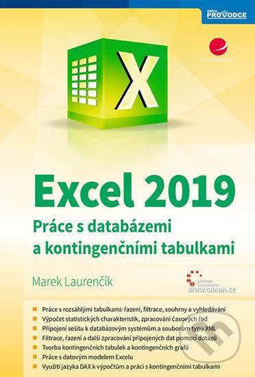 Excel 2019 - Práce s databázemi a kontingenčními tabulkami - Marek Laurenčík
