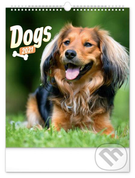 Nástěnný kalendář Dogs 2021 - Presco Group