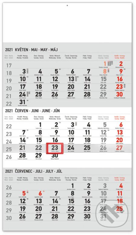 Nástěnný kalendář Standard (šedý) 2021 - Presco Group