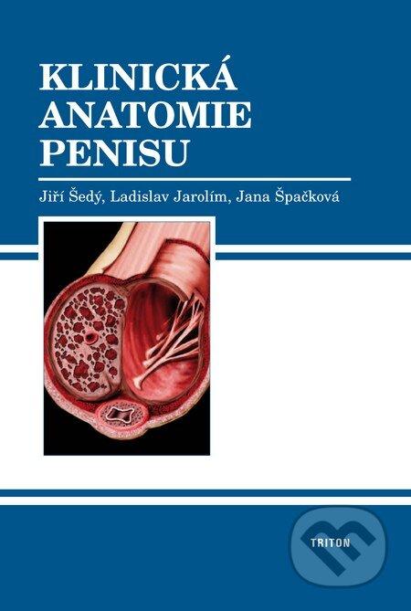 Fatimma.cz Klinická anatomie penisu Image