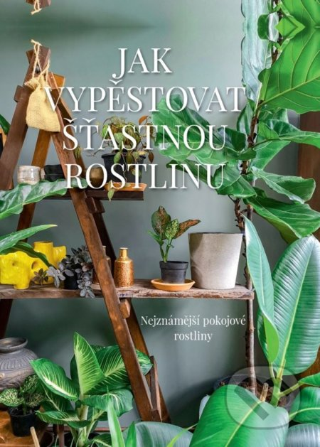 Jak vypěstovat šťastnou rostlinu - Malgorzata Augustynová