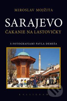 Peticenemocnicesusice.cz Sarajevo Image