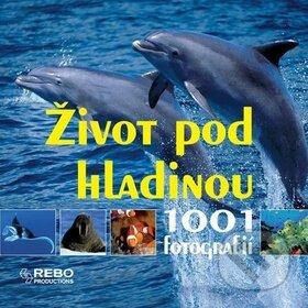 Peticenemocnicesusice.cz Život pod hladinou Image