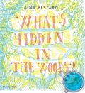 What's Hidden in the Woods? - Aina Bestard