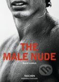 The Male Nude - David Leddick