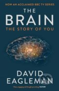 Brain - David Eagleman