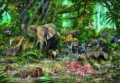African Jungle -