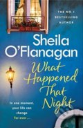 What Happened That Night - Sheila O'Flanagan