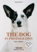 The Dog in Photography - Raymond Merritt