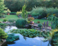 Ashwood Nurseries -