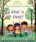 What is Sleep? - Katie Daynes, Marta Alvarez Miguens (ilustrácie)
