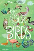 The Big Book of Birds - Yuval Zommer