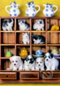 Puppies on Dresser - Leanne Giblett