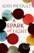 A Spark of Light - Jodi Picoult