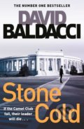 Stone Cold - David Baldacci
